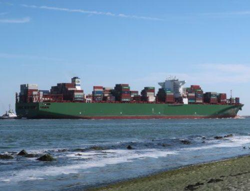 Entwicklung nachhaltiger Schiffskraftstoffe